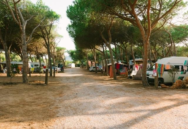 Camper and Roulottes   Torre del Porticciolo