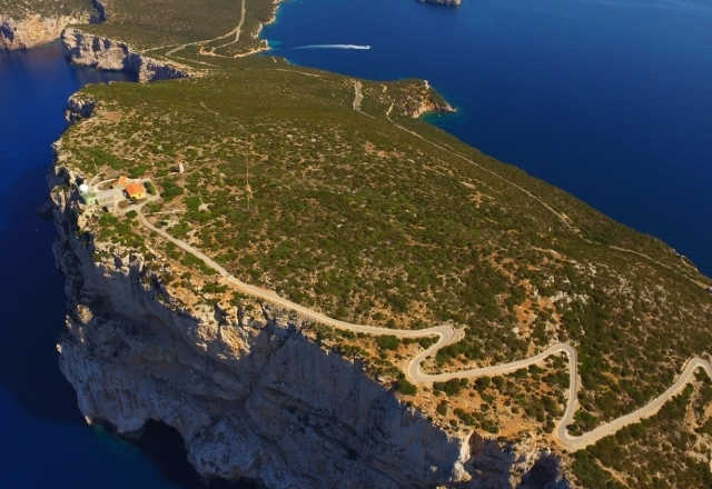 Vegetación mediterránea en Capo Caccia